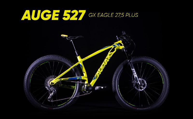 desc bike